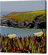 Colorful Point Canvas Print