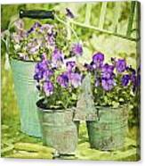 Colorful Spring Flowers On Garden Chair Canvas Print