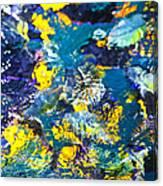Colorful Tropical Fish Canvas Print