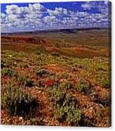 Colorful Valley From Fossil Lake Trailsil Bu Canvas Print