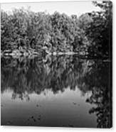 Colorless Reflection Canvas Print