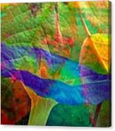 Colors Of Autumn Canvas Print