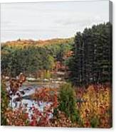 colors of fall in New England Canvas Print