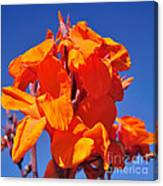Colors Of Summer Canvas Print