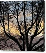 Colours Of The Dusk Canvas Print