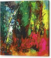 Colours Symphony Canvas Print