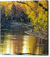 Columbia Bottoms Slough II Canvas Print