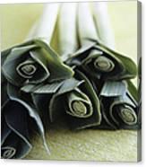 Common Leeks Canvas Print