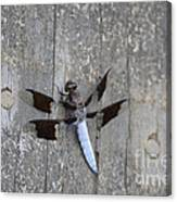Common White Tail Dragonfly Canvas Print