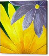 Complementary Blossoms  Canvas Print
