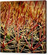 Complexity Of Nature Canvas Print