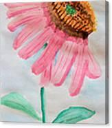 Coneflower - Watercolor Canvas Print