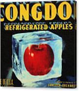 Congdon Refrigerated Apples Canvas Print