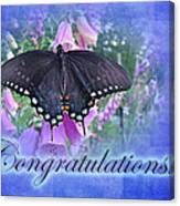 Congratulations Greeting Card - Spicebush Swallowtail Butterfly Canvas Print