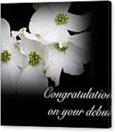 Congratulations On Your Debut - White Dogwood Blossoms Canvas Print