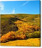 Conway Summit Fall Color Canvas Print