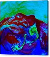 Cool Heat Canvas Print