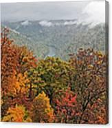 Cooper's Rock West Virginia Canvas Print