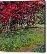 Copper Beeches New Timber Sussex Canvas Print