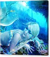 Coral Dreams Canvas Print