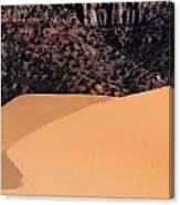 Coral Pink Sand Dunes Canvas Print