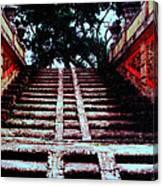 Coral Stairway Canvas Print