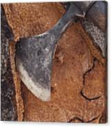 Cork Oak Quercus Suber Bark Canvas Print