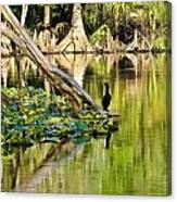 Cormorant On The River Canvas Print