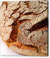 Corn Bread Canvas Print