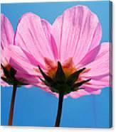 Cosmia Flowers Pair Canvas Print