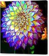 Cosmic Natural Beauty Canvas Print