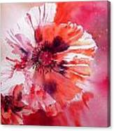 Cosmic Poppies Canvas Print