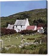 Cottage, Ireland Canvas Print
