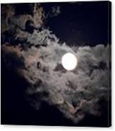 Cotton Moonlight Canvas Print