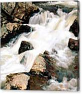 Cotton Waters Canvas Print