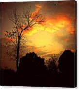Cottonwood Sunset Canvas Print
