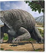 Cotylorhynchus Bransoni, A Prehistoric Canvas Print