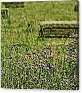 Country Gardens Canvas Print