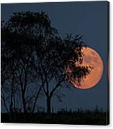 Country Moon  Canvas Print