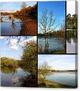Country Parks Collage Canvas Print