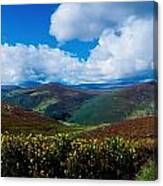 Country Road, Near Luggala Mountain, Co Canvas Print