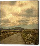 Country Road With Wildflowers Canvas Print