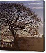 County Tyrone, Ireland Winter Morning Canvas Print
