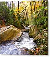 Courthouse River In The Fall 2 Canvas Print