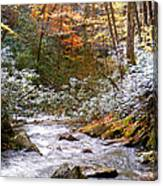 Courthouse River In The Fall Canvas Print