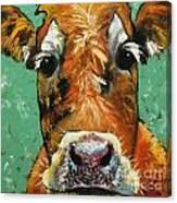 Cow 484 Canvas Print