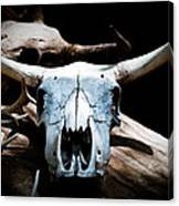 Cow Skull In Shade Canvas Print