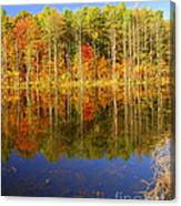 Coxsackie Reflection Canvas Print