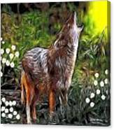 Coyote Howl Canvas Print