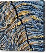 Crack In Pahoehoe Lava Canvas Print